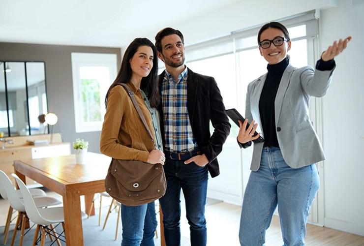 Vente & location de biens meublés